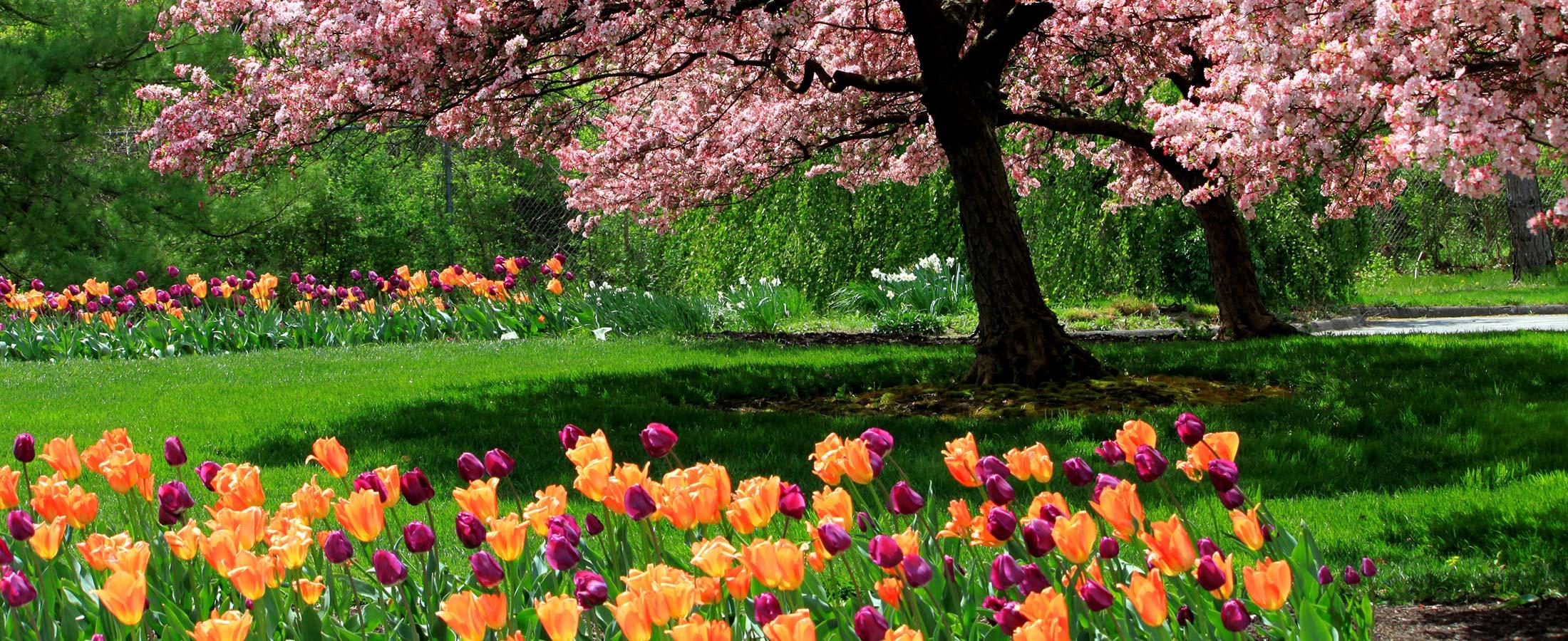 Inniswood Metro Gardens Metro Parks Central Ohio Park
