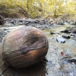 Large concretion (Jill Snyder)