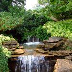 Rock Garden (Anne Riggs)
