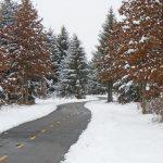 Sweetgum Trail (Mindi McConnell)