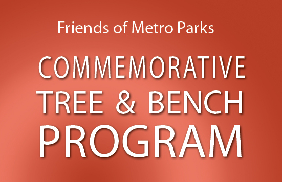 Friends_tree & bench prog_top of front panel