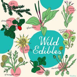 wild-edibles-graphic