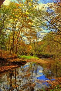 clc_fall-color-on-creek_oct_kerry-dunn-1080px