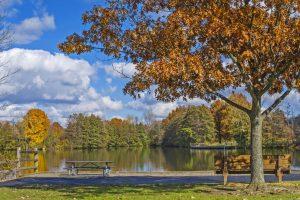 shw_schrock-lake-autumn-scene_b-paskievitch-1080