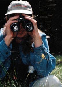 Garden spider by Christopher Graham