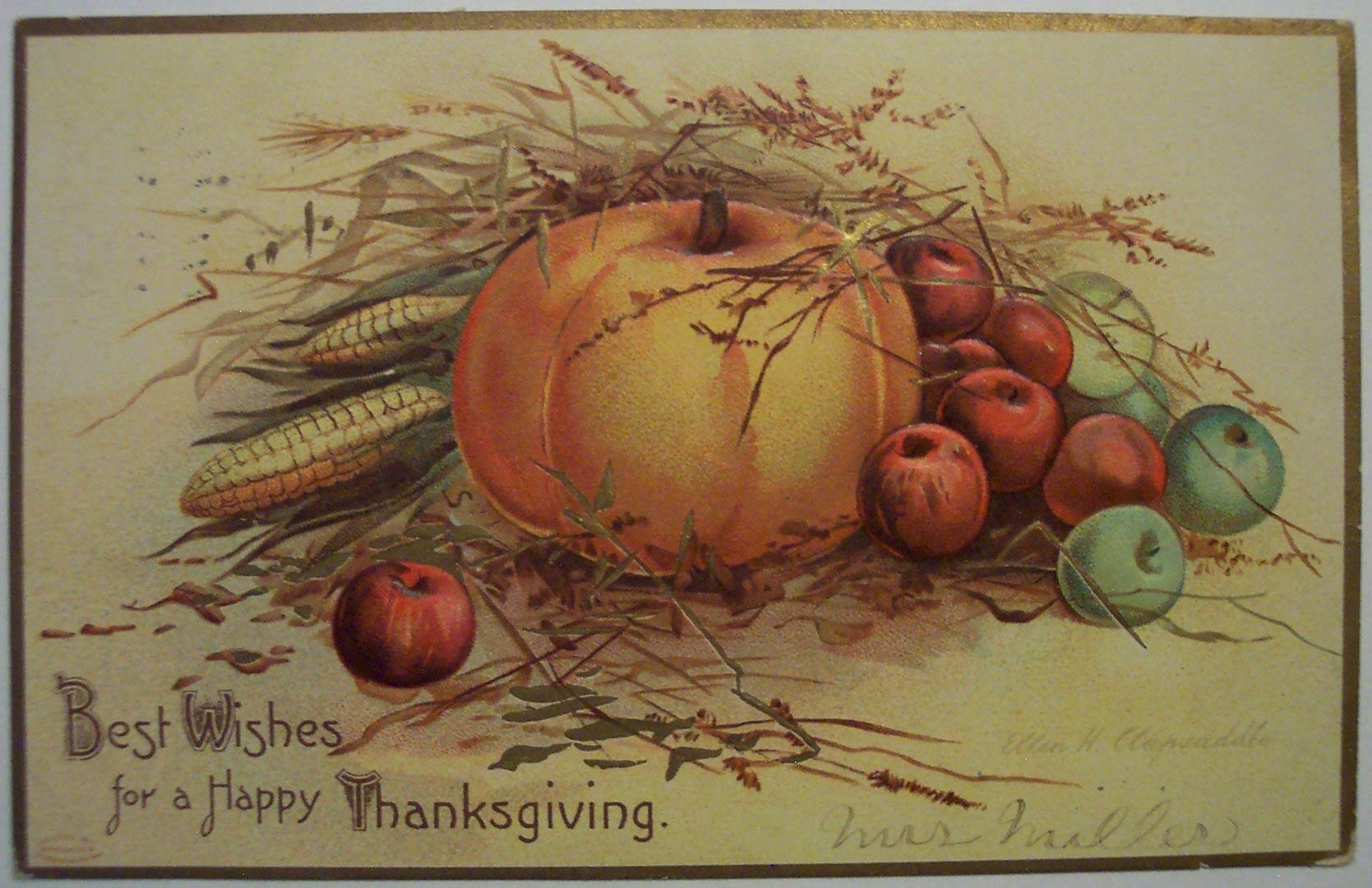 Thanksgiving On The Farm Metro Parks Central Ohio Park