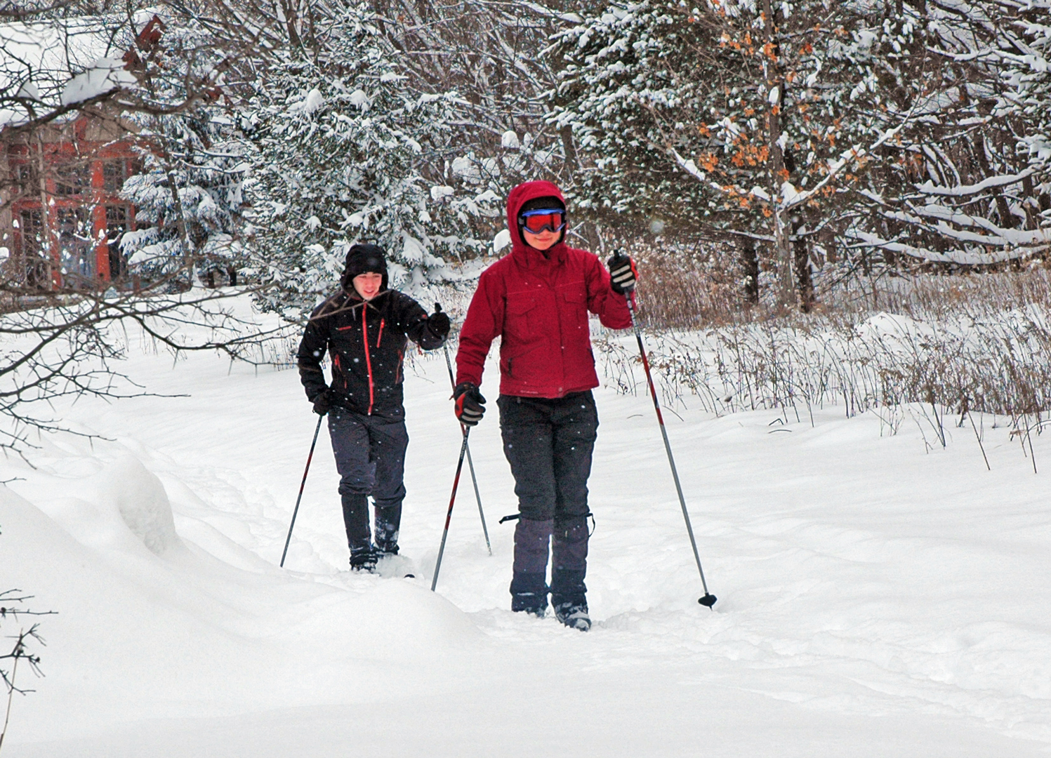 Cross-country skiing at Highbanks. Photo by Virginia Gordon
