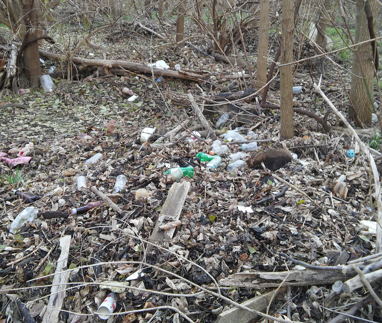 Plastic and aluminum trash deposited alongside Greenway Trails after flooding