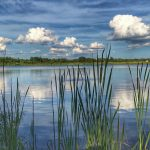 Summer Day with clouds at Darby Bend Lakes in Prairie Oaks Metro Park
