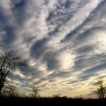 Dramatic clouds hover above winter trees at Battelle Darby Creek