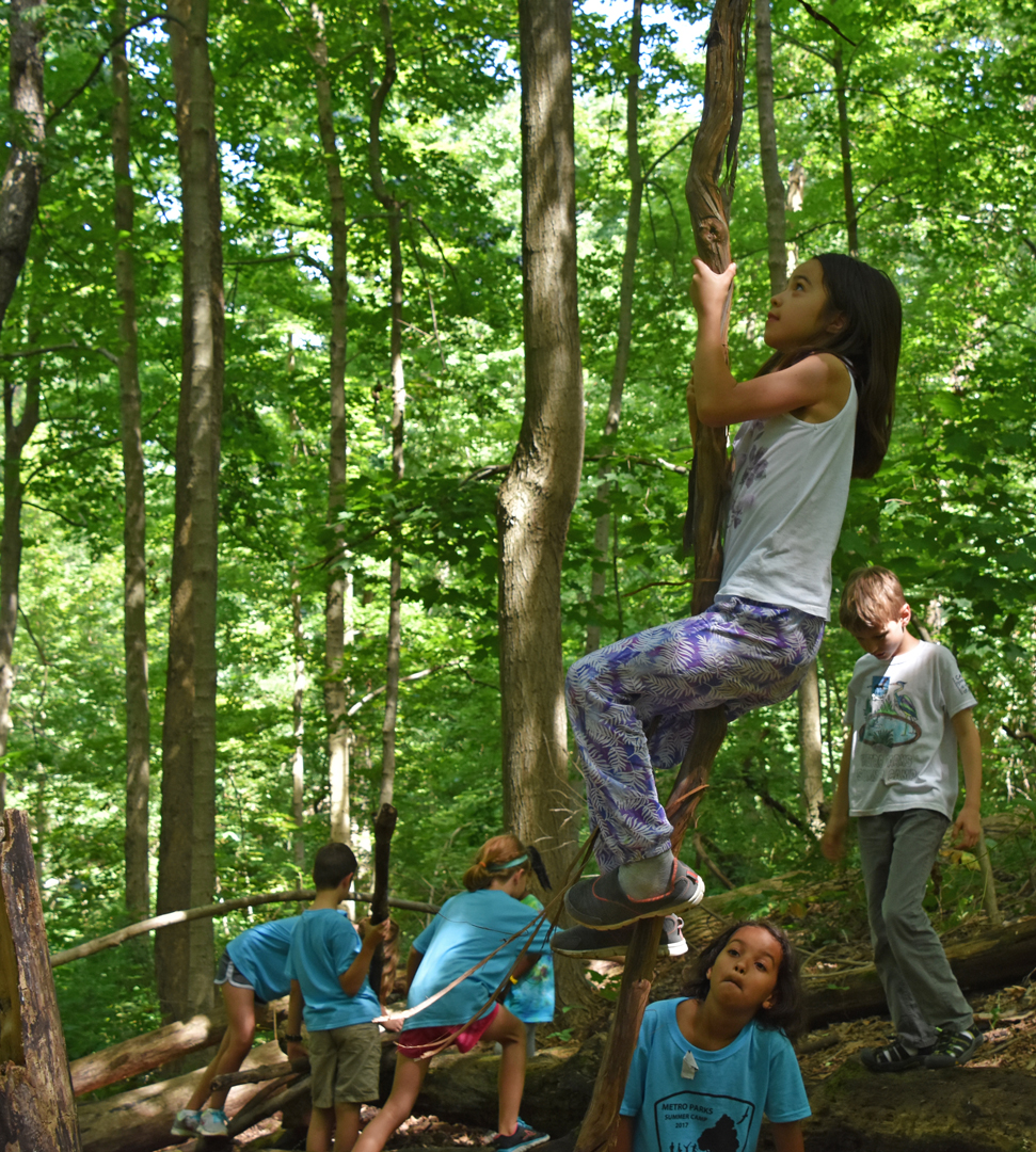 Girl climbs a tree in natural play area at Sharon Woods