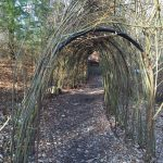 Tunnel created by wrapping saplings around a frame at Inniswood