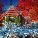 Snow covers low growing plants while fall color shows in background of gazebo at Inniswood