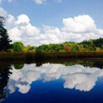 Fall reflections in the fishing pond at Chestnut Ridge