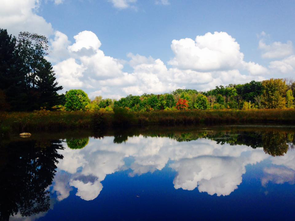 Reflections in pond at chestnut ridge metro parks for Fishing ponds columbus ohio