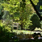 Park bench and September sunshine in the gardens at Inniswood