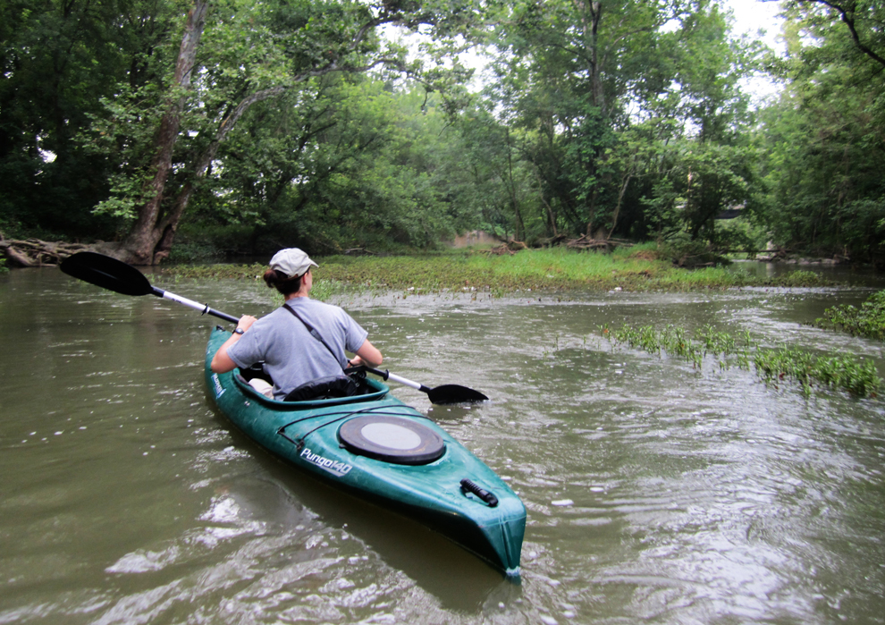 Kayaker on Big Darby Creek during bird survey