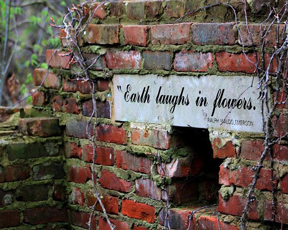 Roses In Garden: Inspirational Quote On Wall Of Secret Garden