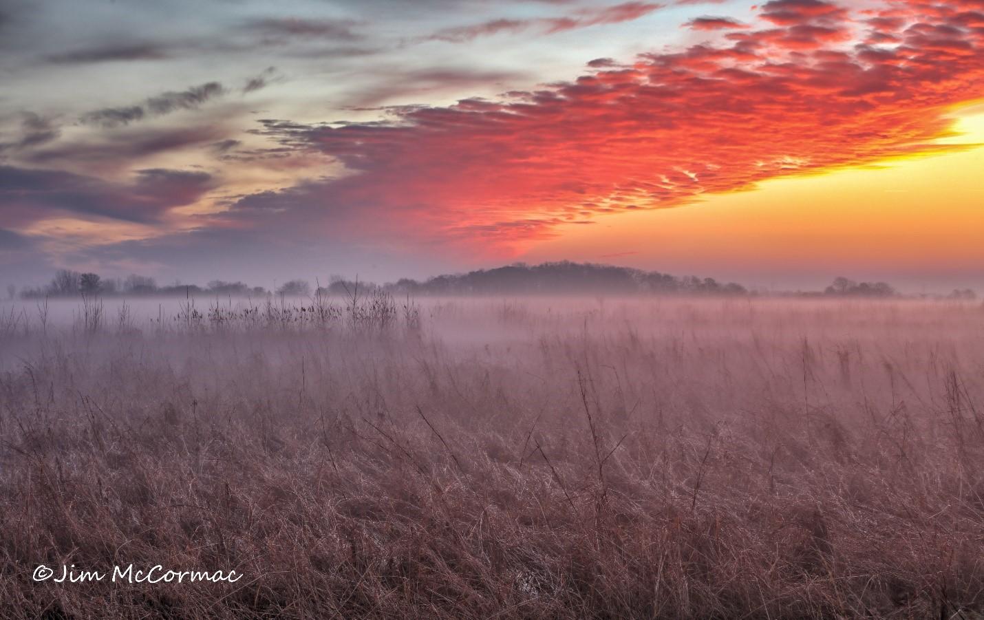 A fog-enshrouded prairie marsh at Battelle Daeby Creek Metro Park, just before sunrise.