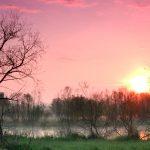 Sunrise over Ellis Pond at Pickerington Ponds Metro Park