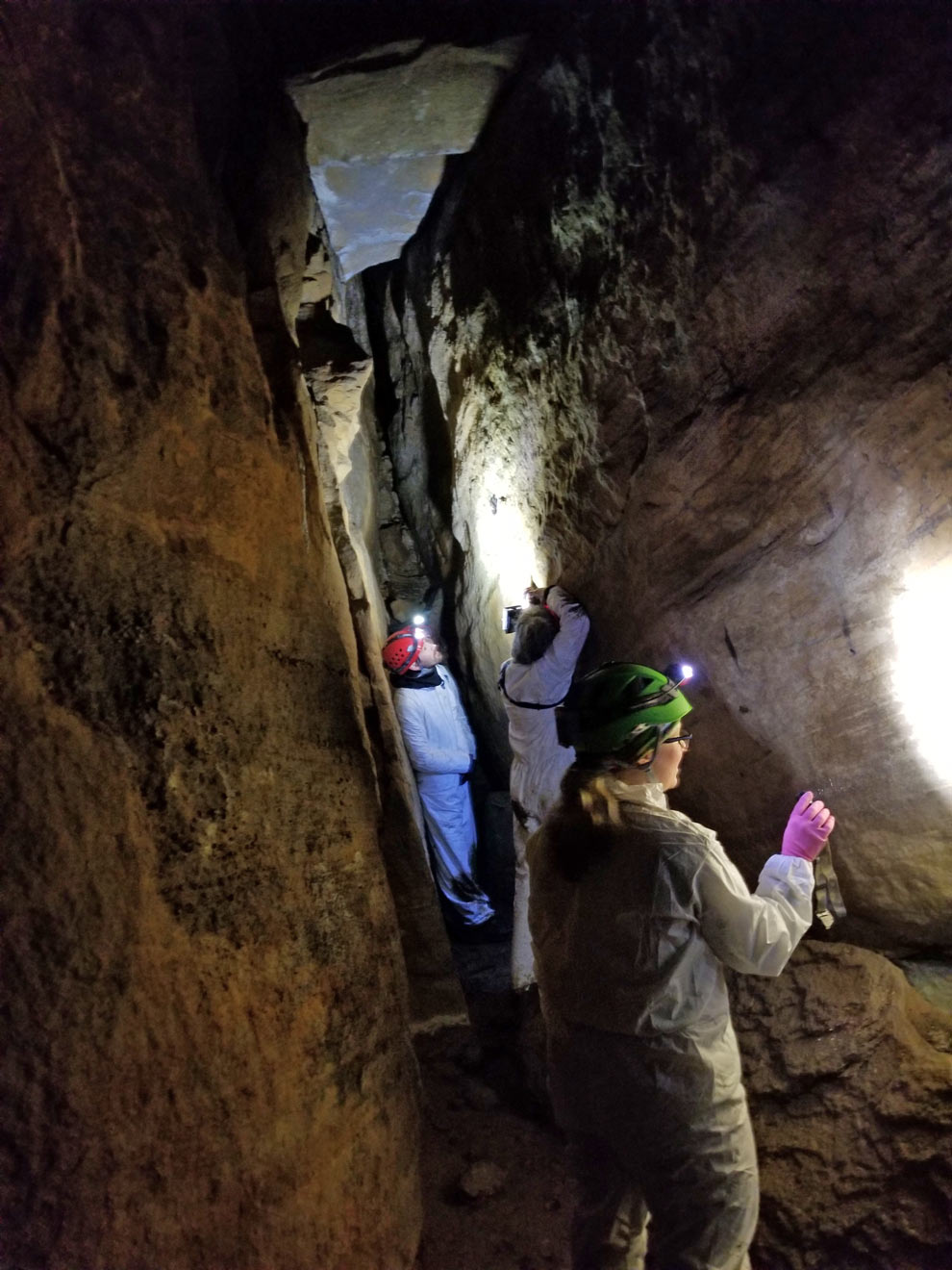 Biologists from ODNR inside a cave at Clear Creek on a search for bats