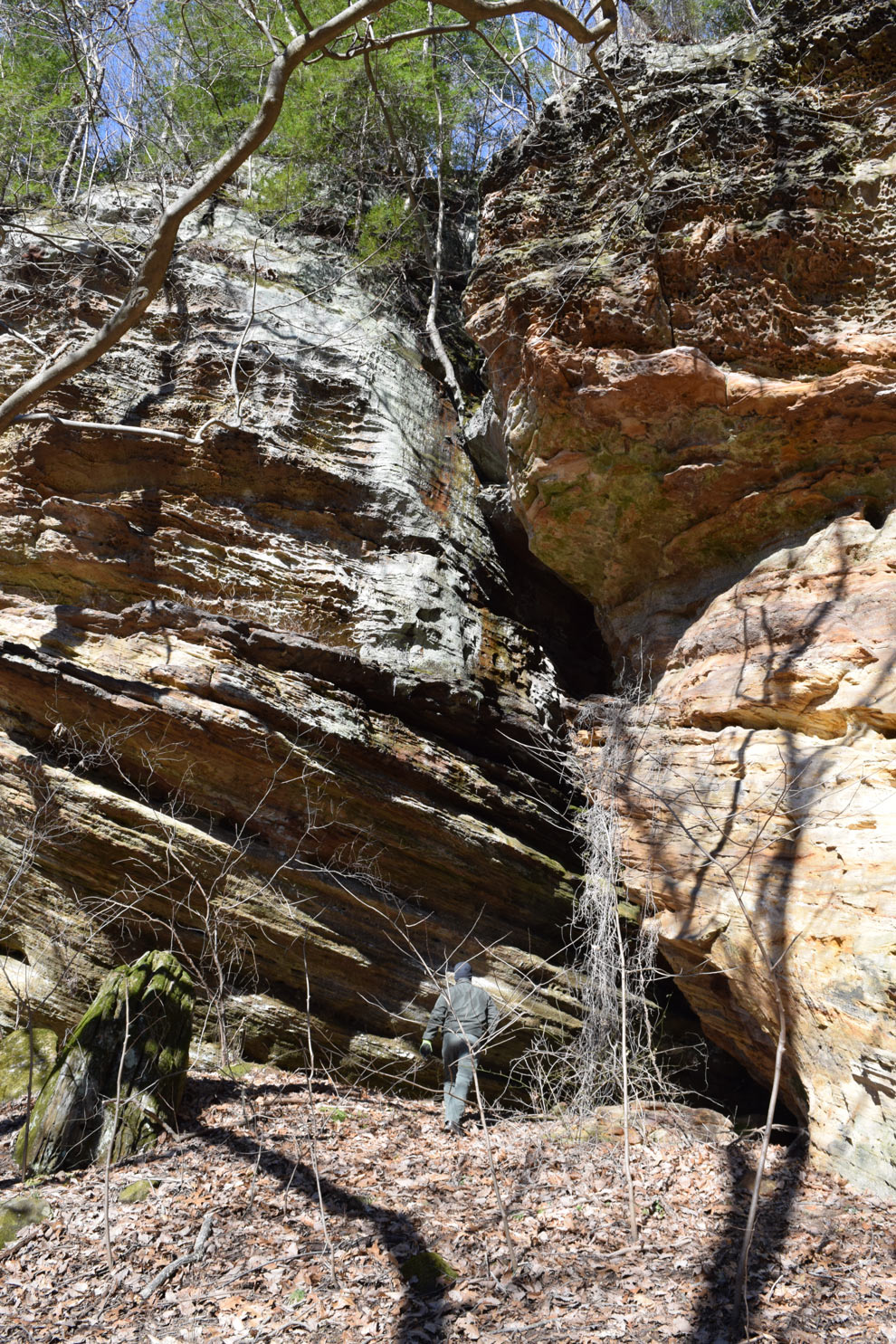 A Metro Parks staff member approaches the entrance to a cave at Clear Creek while searching for bats