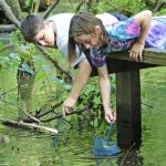 Kids search for pond life with nets from the boardwalk deck at Blacklick Woods