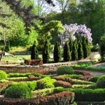 Knot Garden and wisteria at Inniswood