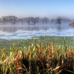 Foggy morning on Blue Wing Pond at Pickerington Ponds Metro Park