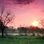 Sunrise over Ellis Pond in Pickerington Ponds Metro Park