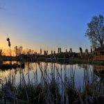 Sunrise at Ellis Pond in Pickerington Ponds Metro Park