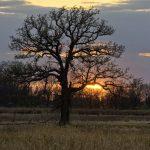 Sunset at Arrowhead Marsh in Pickerington Ponds Metro Park