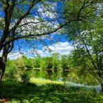 Scioto River in Scioto Grove Metro Park, with spring blooming