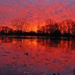 Sunrise over Schrock Lake at Sharon Woods Metro Park