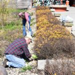 Earth Day clean-up at Scioto Audubon Metro Park