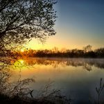 Sunrise over Heron Pond in Three Creeks