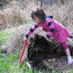 Girl searches for wetland critters in Turtle Pond during a program at Three Creeks