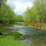 Spring leaves transform winter drabness along Big Darby Creek in Battelle Darby Creek Metro Park