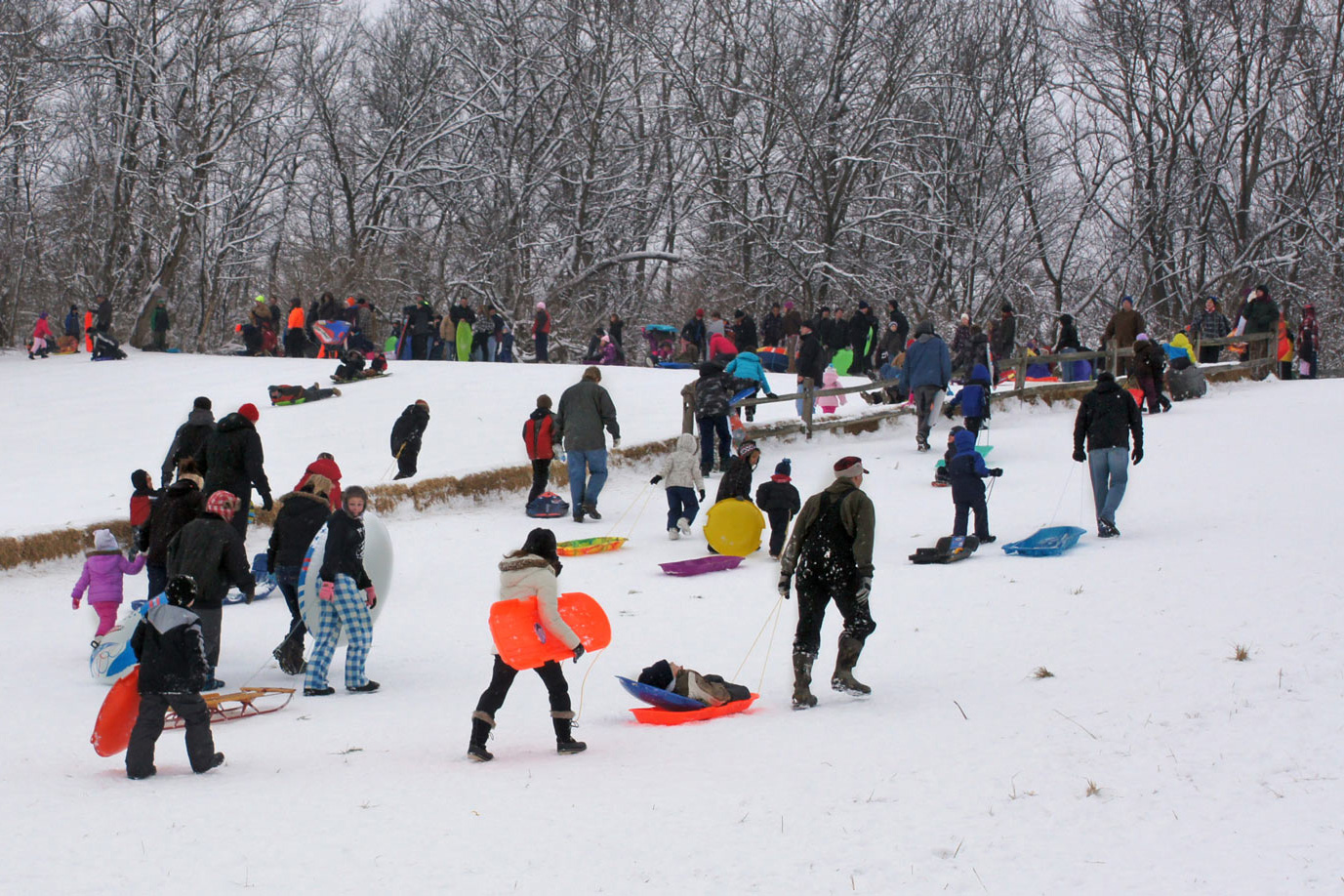 Sledders walk to the top of the sledding hill at Battelle Darby Creek Metro Park