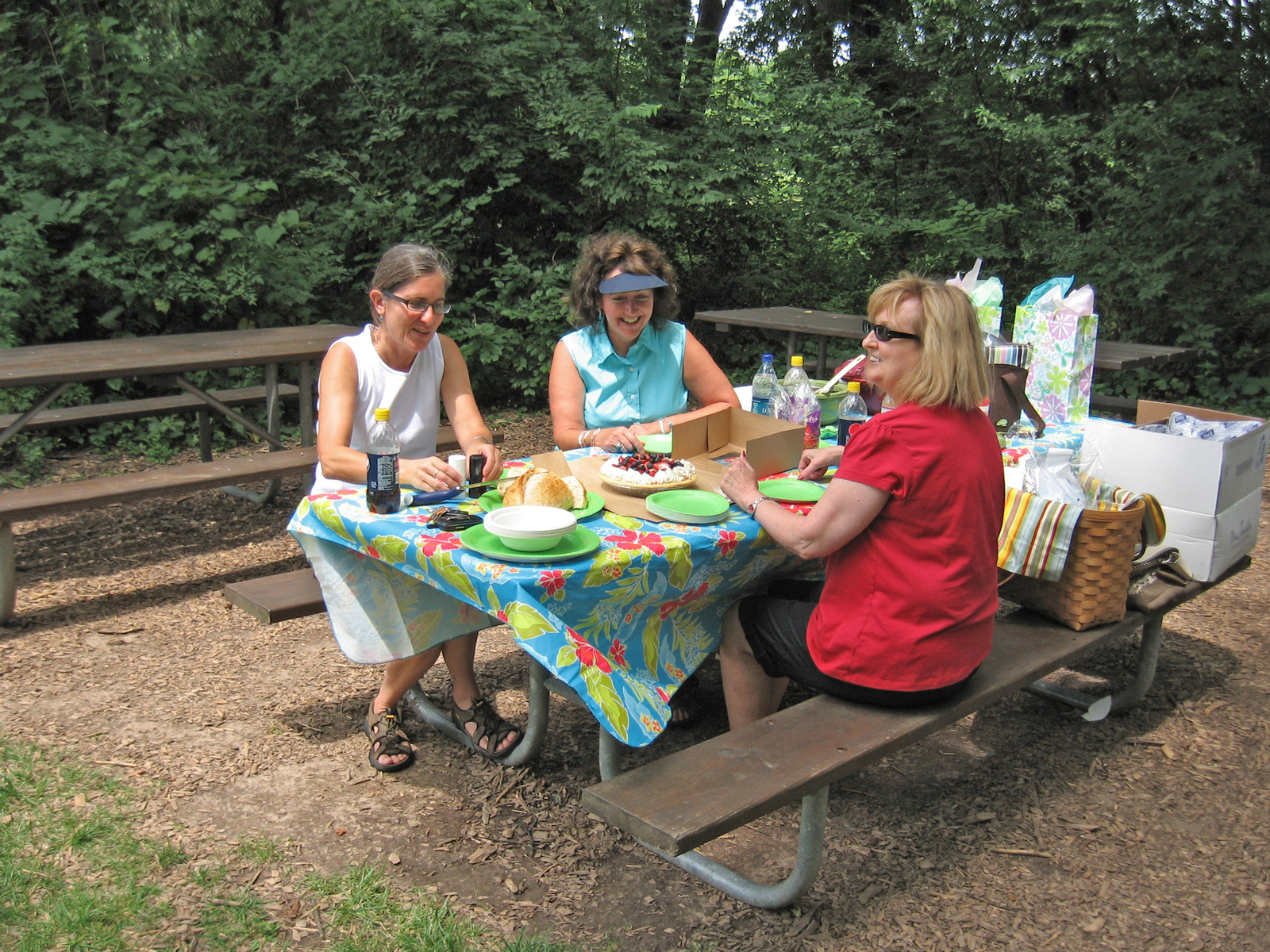Picnicking at Slate Run's Buzzard's Roost Picnic Area. Photo by Andrea Krava.