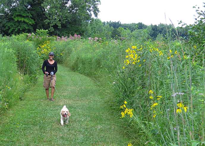 Visitor and dog on picnic area path at Sharon Woods Metro Park